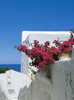 Beauty of the islands : Panarea